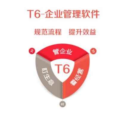 畅捷通T6软件