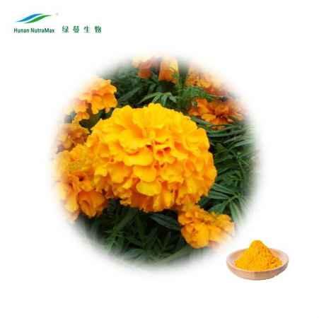 叶黄素玉米黄质万寿菊提取物